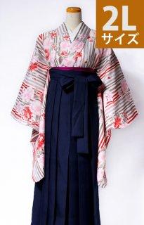 レンタル_KH20:ベージュ地縞に八重桜[2L]×濃紺袴