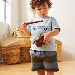 Tea Collection Pattern Cruiser Shorts Painted Stripe ティコレクション ストライプショートパンツ(ネイビー/ブラウン)