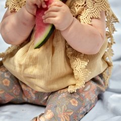 Louise Misha Baby Blouse Adolio Soft Honey ルイーズミーシャ サイドレースリーブブラウス(ソフトハニー)