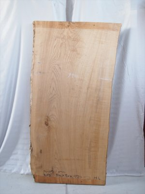 塩地(シオジ)福井県産一枚板  テーブル用の天板材