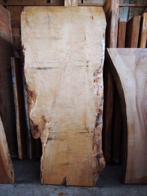 栃(トチ)純白一枚板!テーブル用の天板材