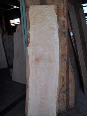 輝く栃(トチ) 無垢一枚板  デスク用の天板材