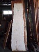 栃無垢一枚板 高級材トチの白い部分のみの一枚板です。希少価値大!!