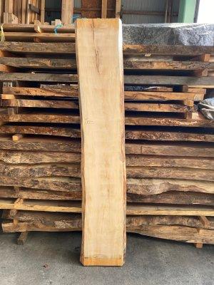 栃(トチ) 無垢一枚板  ベンチ用の天板材