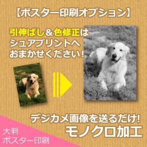 【ポスター印刷オプション】モノクロ印刷