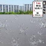 【幅90cm×1m単位】 窓ガラス目隠しフィルム [mgch90-l048]
