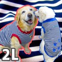 ドッグタンクトップ 紺×白ボーダー(肉球刺繍入り) 【2Lサイズ(大型犬)】