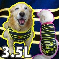 ドッグタンクトップ 紺×黄ボーダー(肉球刺繍入り) 【3.5Lサイズ(超大型犬)】