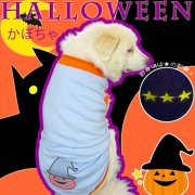 ドッグタンクトップ ハロウィン かぼちゃ 【4Lサイズ(超大型犬)】メール便送料無料