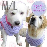 犬服 いぬ服 ドッグタンクトップ ラベンダードット【M/Lサイズ(中型犬)】日本製 メール便送料無料
