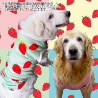 犬服 いぬ服 ドッグタンクトップ いちごプリントタンクトップ ストロベリー【4Lサイズ(超大型犬)】日本製 メール便送料無料