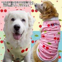 犬服 いぬ服 ドッグタンクトップ さくらんぼプリントタンクトップ さくらんぼ【M/Lサイズ(中型犬)】日本製 メール便送料無料