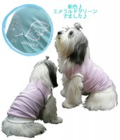犬服 いぬ服 ドッグタンクトップ My angel 【Lサイズ(中型犬)】日本製 メール便送料無料(代金引換の場合別途送料)