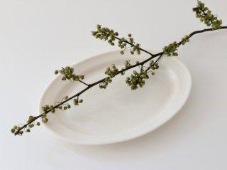 オーバル皿(S)ホワイト