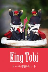 【即納品】King tobi本体セット※事前了承事項あり