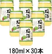 梅酒180ml/30本の商品画像