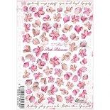 ネイルシール Sha-Nail Pro 写ネイルPro RUMI-006 Pink Blossom / ピンクブロッサム