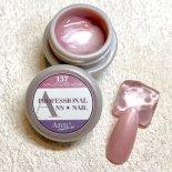 Ann Professional カラージェル 4g 137 シアーパールベビーピンク