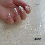 +D D.nail オーロラミラーパウダー 0.5g ホワイトグリーン