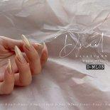 +D D.nail オーロラミラーパウダー 0.5g ホワイトオレンジ