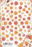 ネイルシール Sha-Nail Pro 写ネイルPro PFW-001 おしばな (アプリコット) / Pressed Flowers (Apricot)