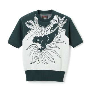 <img class='new_mark_img1' src='//img.shop-pro.jp/img/new/icons1.gif' style='border:none;display:inline;margin:0px;padding:0px;width:auto;' />Panther Cotton Knit  Dark Green