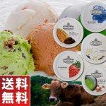 木次乳業 島根県 奥出雲発 スーパープレミアムアイスクリーム VANAGA 5個セット 送料無料