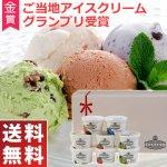 木次乳業 島根県 奥出雲発 スーパープレミアムアイスクリーム VANAGA 8個セット 送料無料