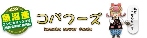 コパフーズ|新潟県魚沼産コシヒカリ100%【発芽玄米粉】販売店