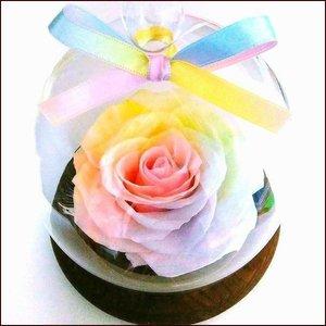 【 花径10cm大輪バラ 】ハートのユメ パステルレインボーローズ ガラスドームギフト プリザーブドフラワー枯れない夢のお花 木製ドーム 送料…