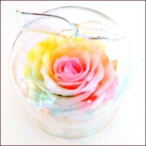 【 花径10cm大輪バラ 】ハートのユメ パステルレインボーローズ  アップルガラスドーム プリザーブドフラワー枯れない夢のお花 〈〈 ガラスの林檎 〉〉 送料…