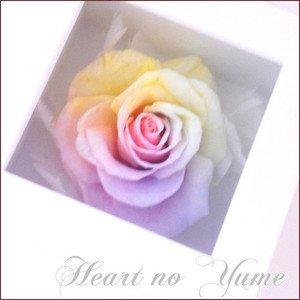 【 花径11cm大輪バラ 】ハートのユメ パステルレインボーローズ フレームボックス ホワイトギフト プリザーブドフラワー枯れない夢のお花 送料…