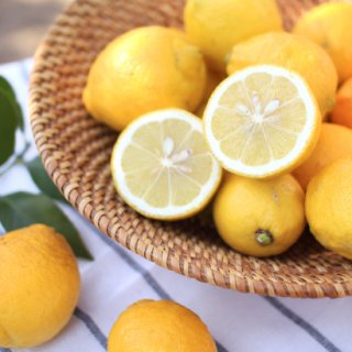 小豆島産レモン 完全無農薬(5kg)