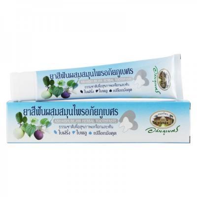アバイブーベ  ハーバル歯磨き粉 100g