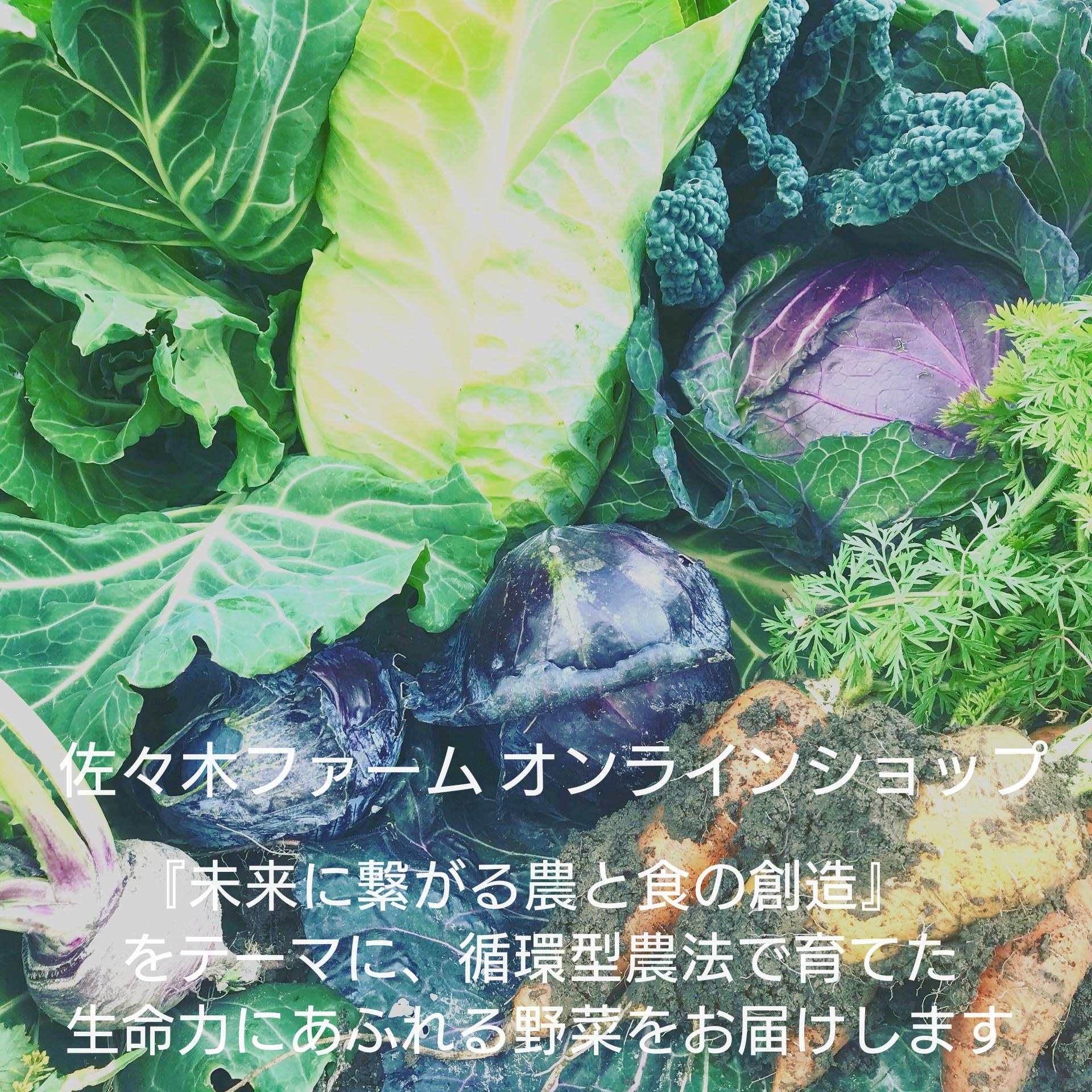 洞爺の佐々木ファーム|土はいのち。いのちは土から。〜未来に繋がる農と食の創造〜