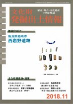 文化財発掘出土情報2018年11月号(通巻450号)