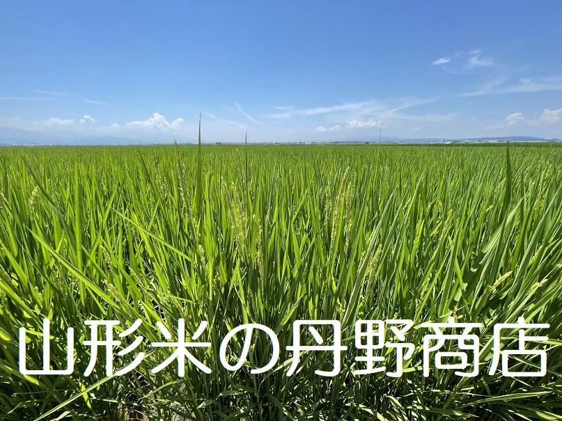 山形米の丹野商店