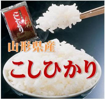 新米【送料無料】28年山形県産コシヒカリ 白米 5kg