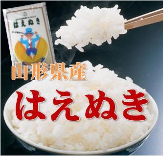 新米【特A受賞】【送料無料】28年山形県産はえぬき 白米10kg