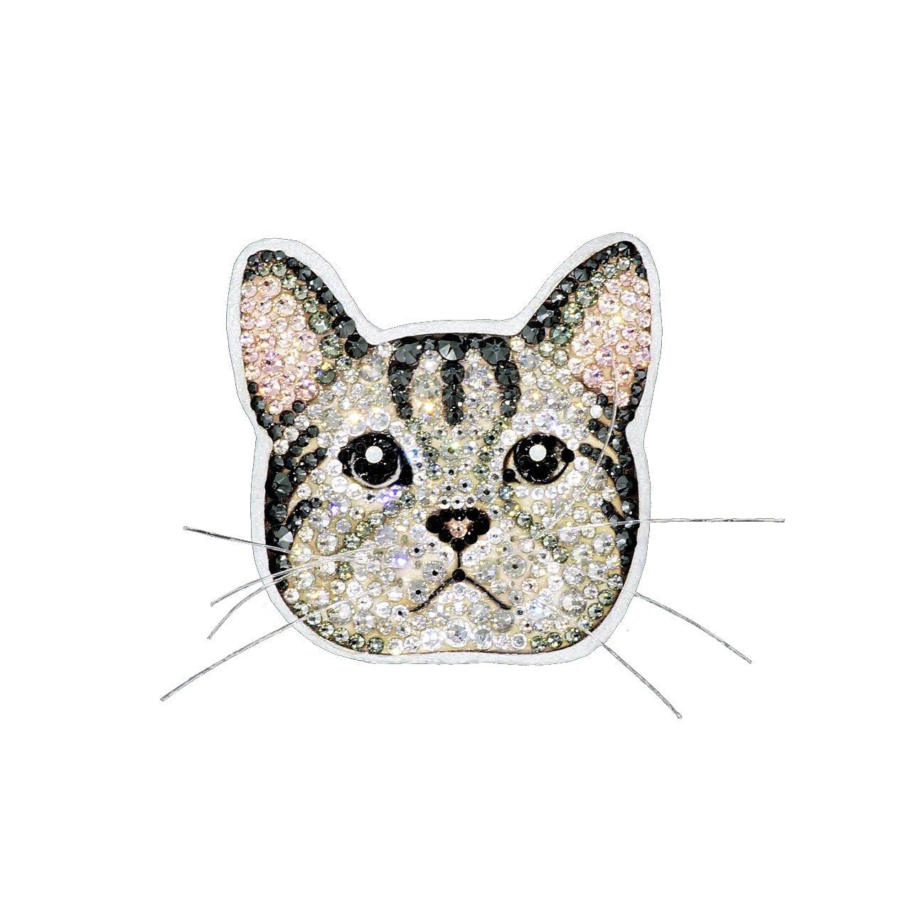 【CAT】