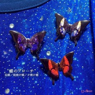 蝶のブローチ(星蝶/朝焼け蝶/夕焼け蝶)