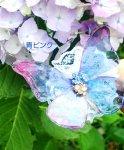 涼の精霊 蝶クリップ☆