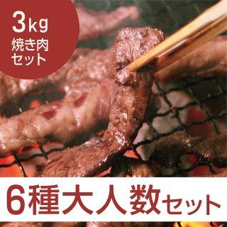 大人数バーベキュー 焼き肉セット3kg