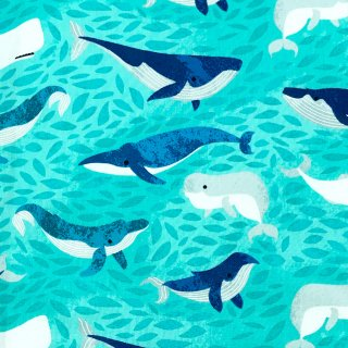 クジラの仲間たち エメラルドグリーン
