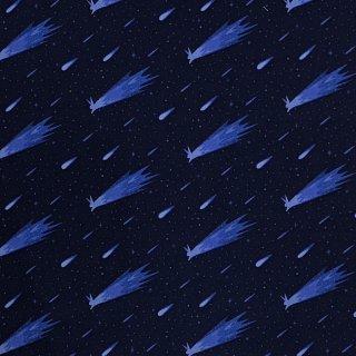 ほうき星 うさぎ