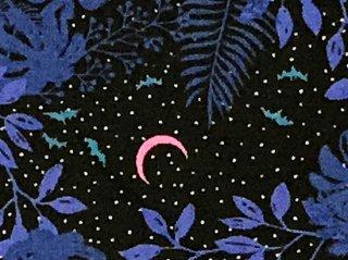 ピンクの月とコウモリ 森の空