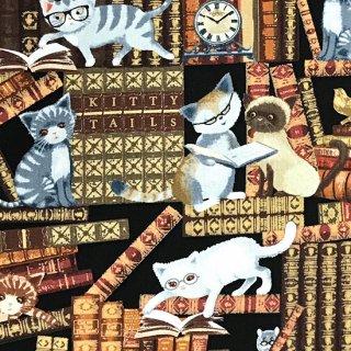 本棚で遊ぶいたずら猫