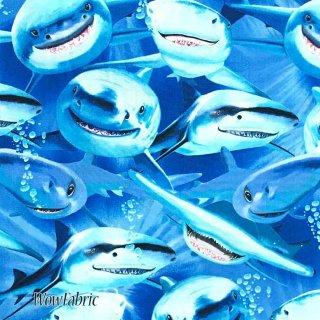 サメ柄 3Dキャラクター風