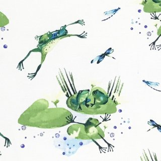 水彩画風 池で遊ぶカエル  ホワイト