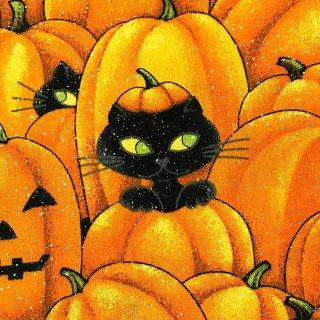カボチャと黒猫 ラメ入